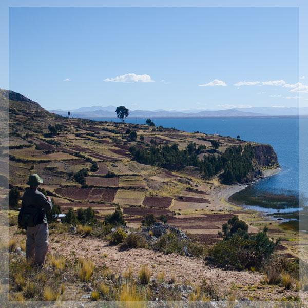 """Puno """"puro, claro, quechua, aymará, vivo, alegre, rojo, verde, azul, fiesta, amable, frío, caliente, quinua,sopa"""""""