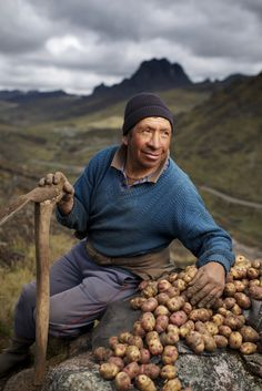 5261c9ca5f1e3b435232a2aa91ab3167--the-smile-peruvian-potatoes.jpg