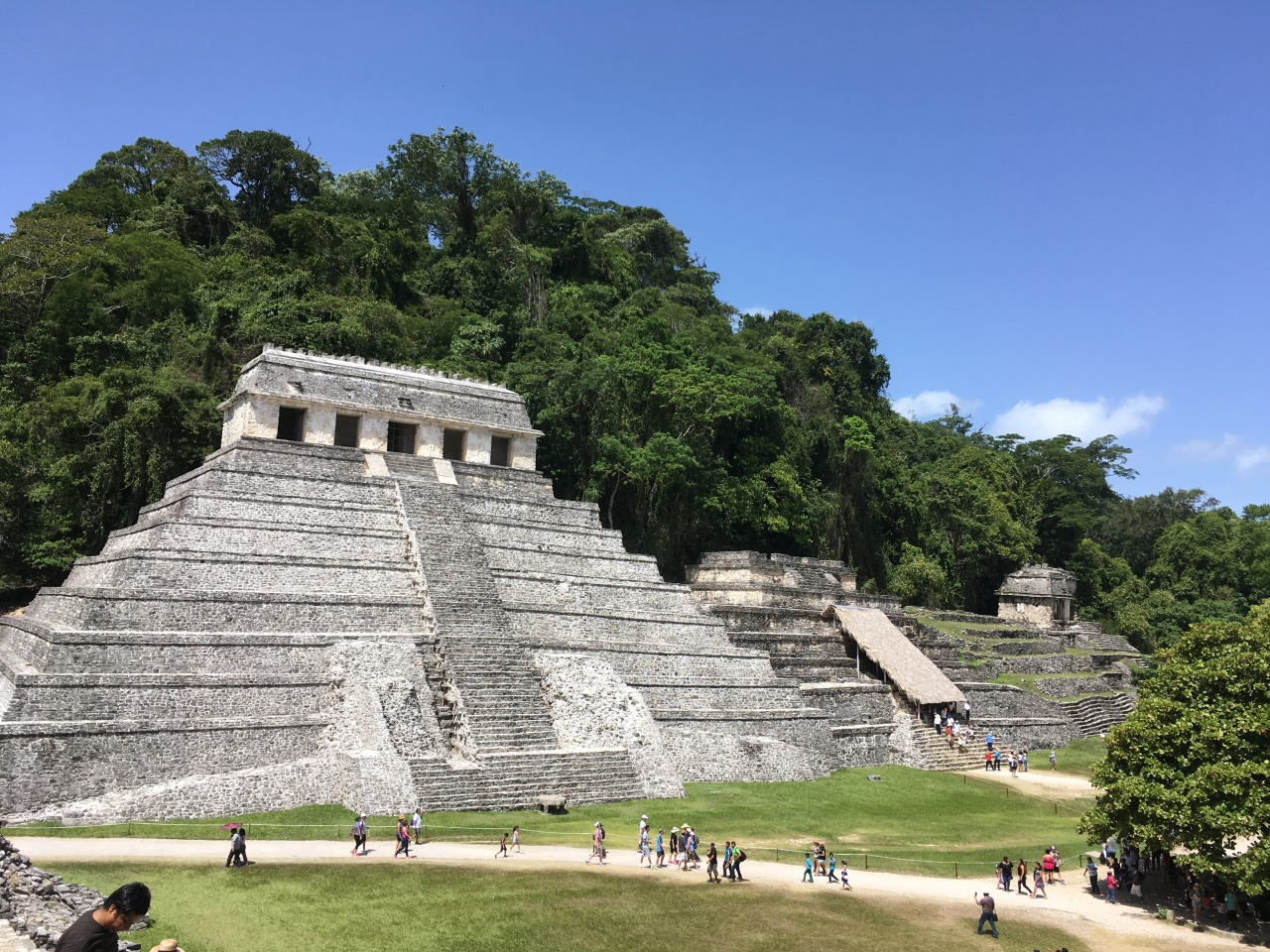 Discover hidden Maya ruins in the jungle of Palenque